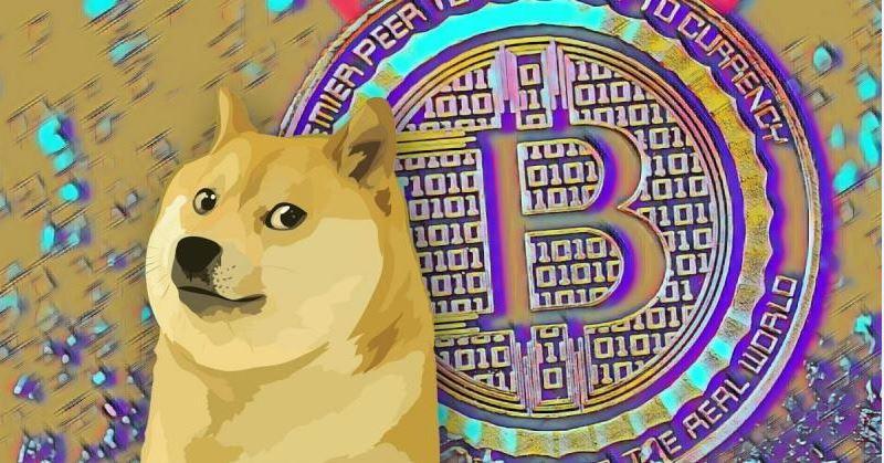 Cá cược Dogecoin